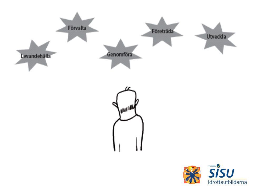 Fem ledstjärnor kan fungera som sammanfattning av vad man oftast förväntar sig av en styrelse. Här kan du som utbildare t ex antingen välja att muntligen gå igenom var och en av stjärnorna för att sedan samtala med gruppen om hur väl man känner igen beskrivningen, om det är något man vill lägga till och/eller dra ifrån. Har du egna erfarenheter är det läge att bjuda på dem.