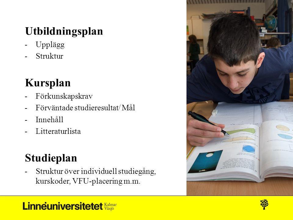 Utbildningsplan Kursplan Studieplan Upplägg Struktur Förkunskapskrav