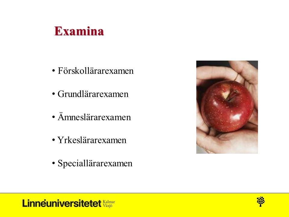 Examina Förskollärarexamen Grundlärarexamen Ämneslärarexamen