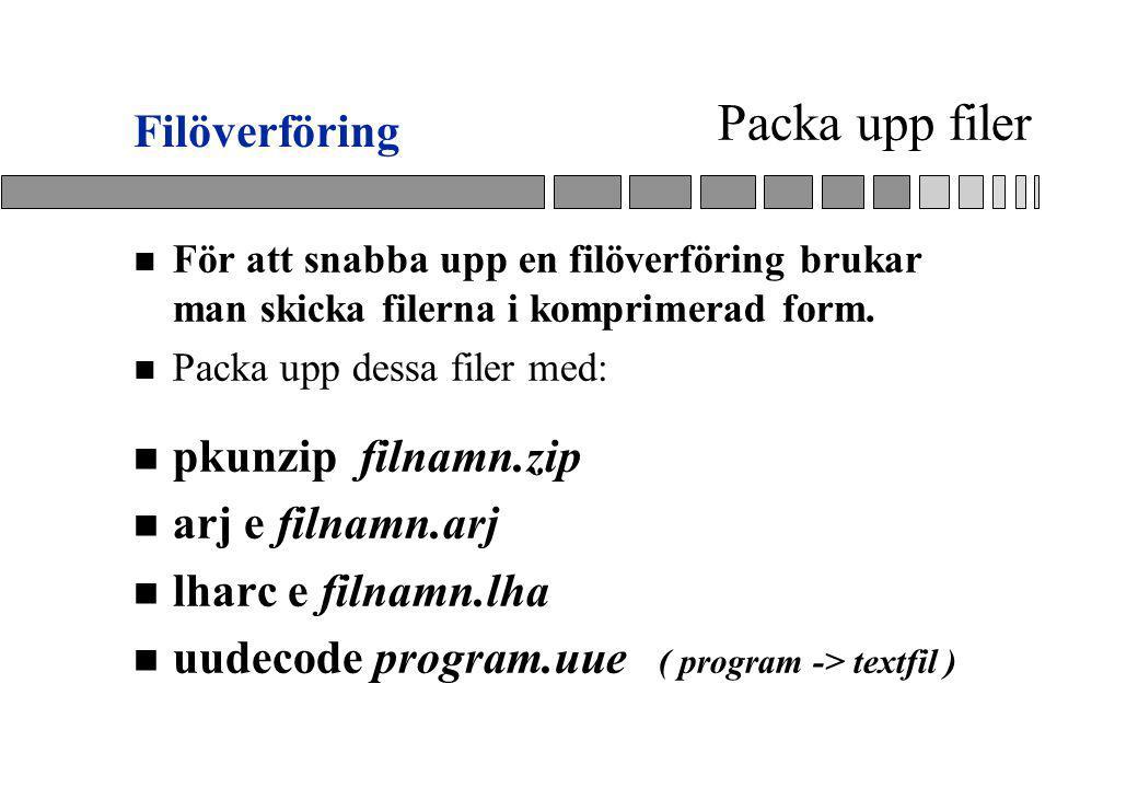 Packa upp filer Filöverföring pkunzip filnamn.zip arj e filnamn.arj