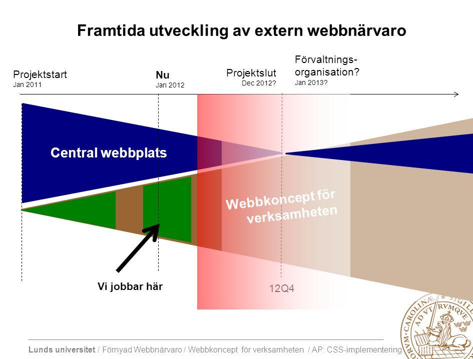 Framtida utveckling av extern webbnärvaro