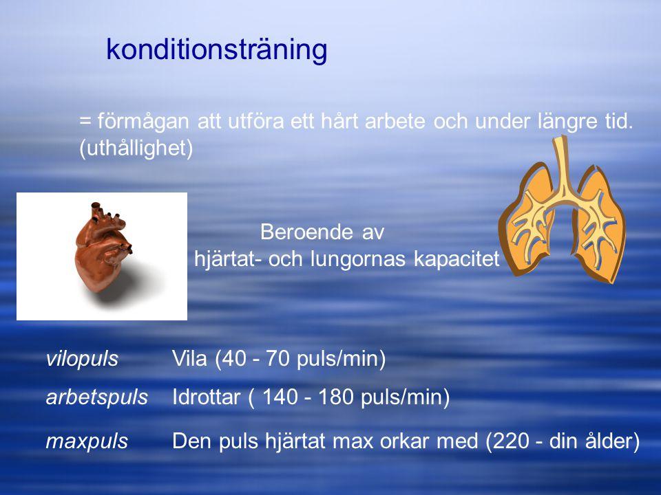 konditionsträning = förmågan att utföra ett hårt arbete och under längre tid. (uthållighet) Beroende av.