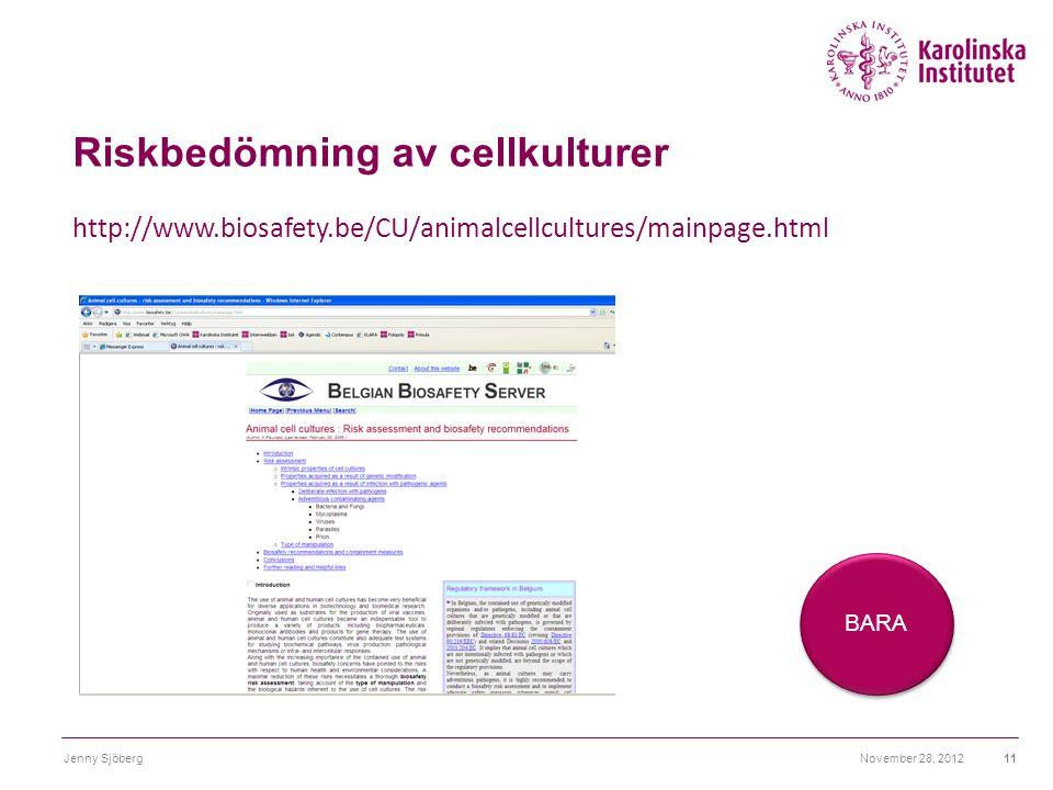 Riskbedömning av cellkulturer