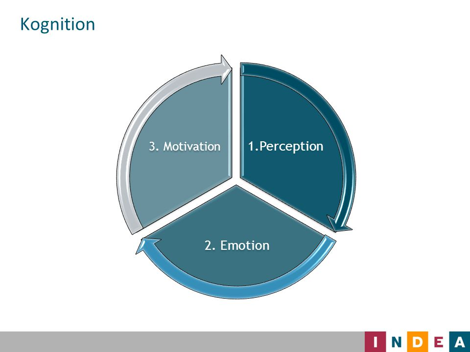 Kognition 1.Perception 2. Emotion 3. Motivation