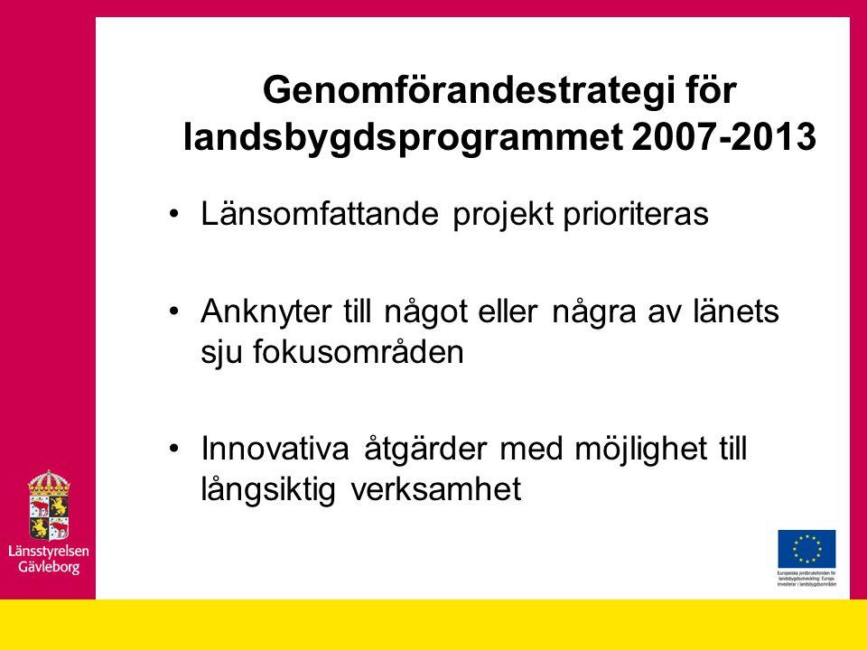 Genomförandestrategi för landsbygdsprogrammet 2007-2013