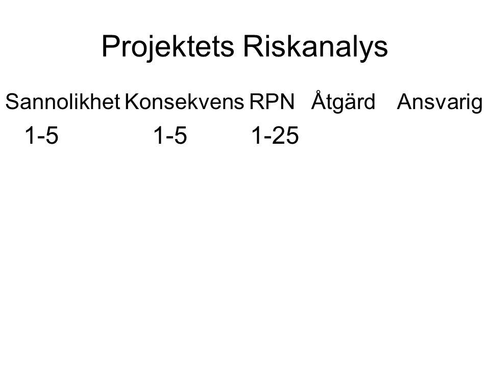 Projektets Riskanalys