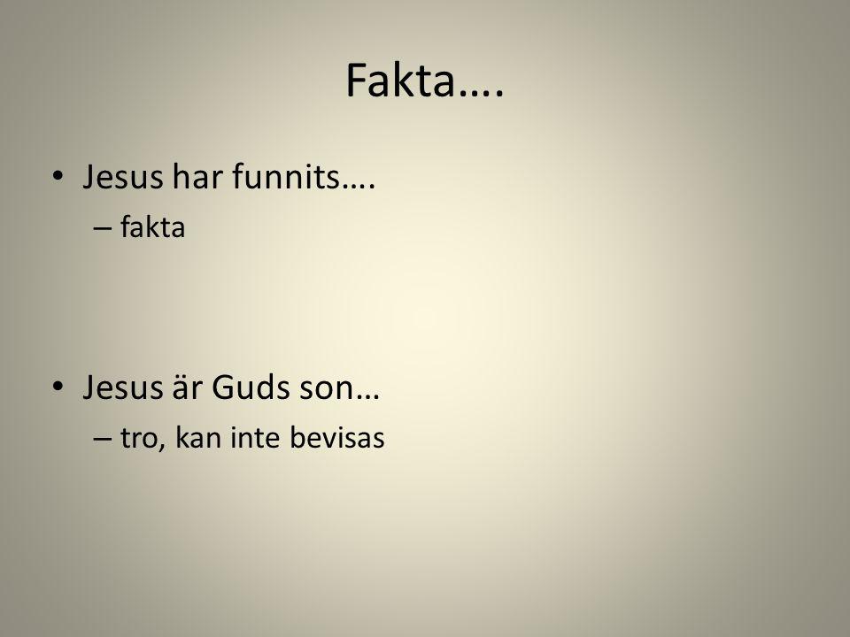 Fakta…. Jesus har funnits…. Jesus är Guds son… fakta