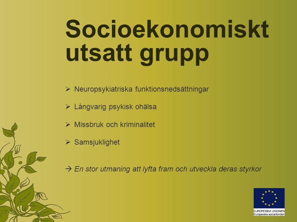 Socioekonomiskt utsatt grupp