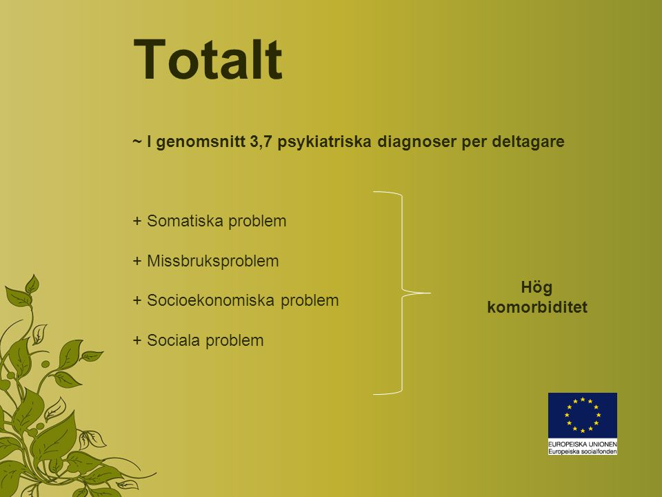 Totalt ~ I genomsnitt 3,7 psykiatriska diagnoser per deltagare