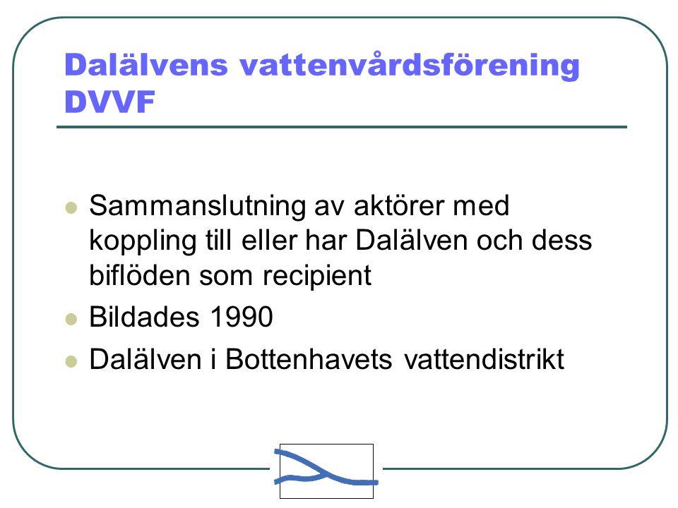 Dalälvens vattenvårdsförening DVVF