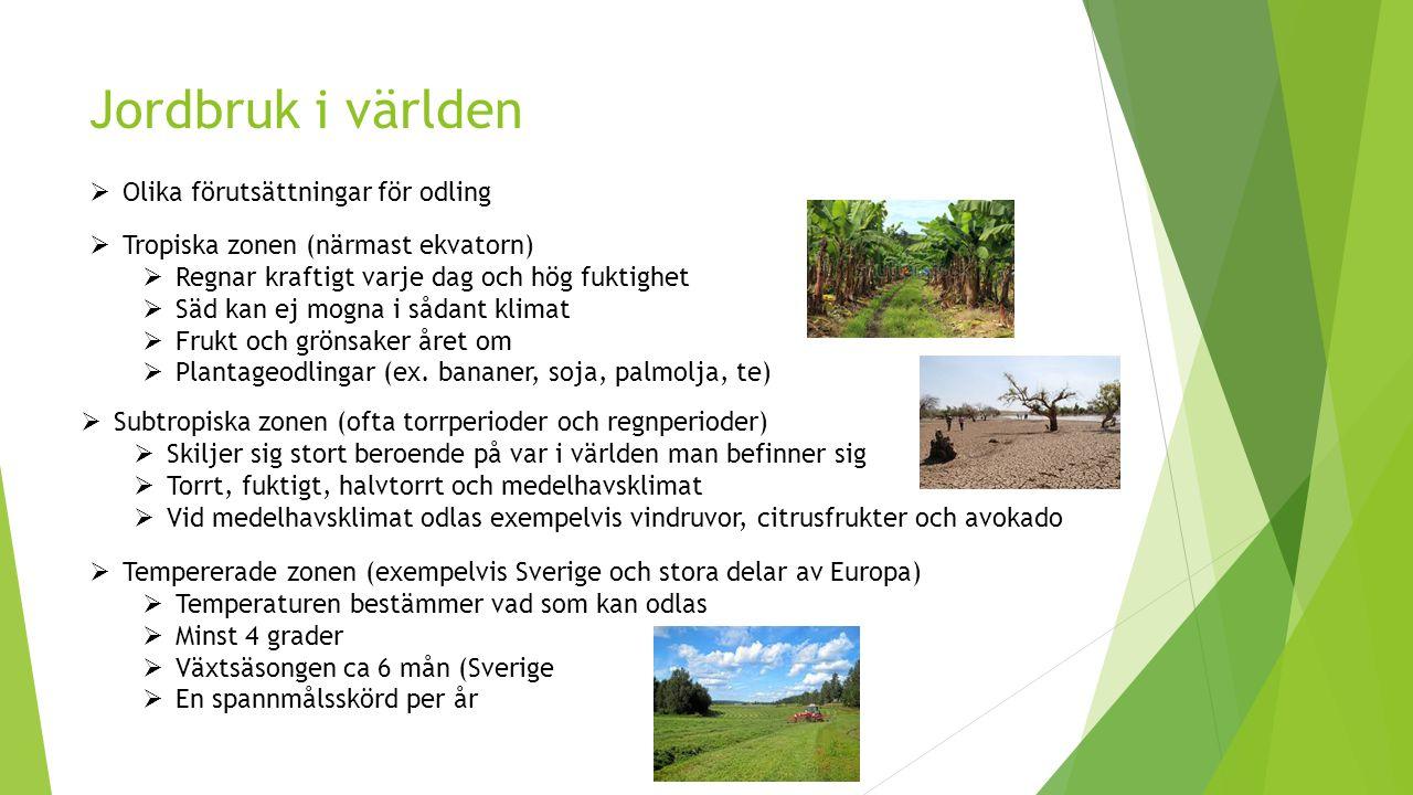 Jordbruk i världen Olika förutsättningar för odling