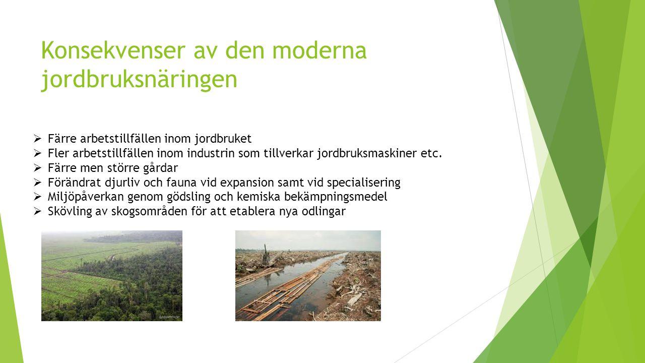Konsekvenser av den moderna jordbruksnäringen