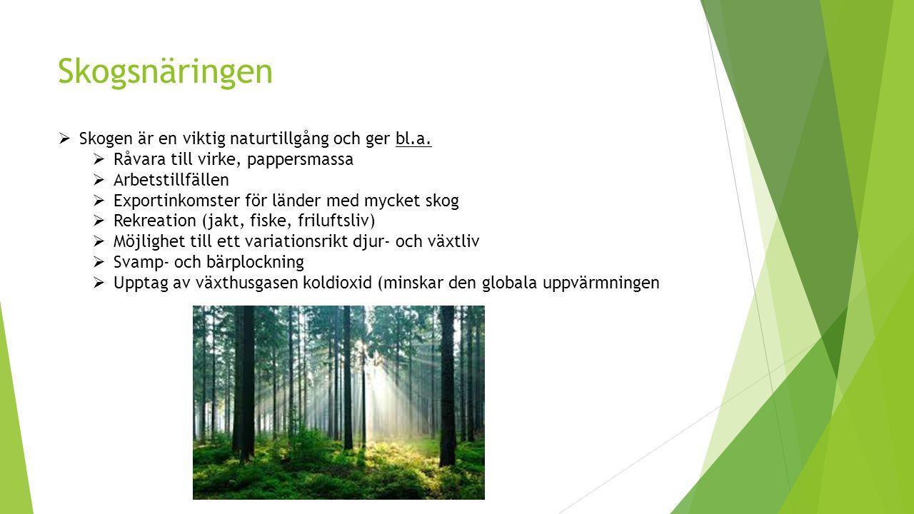 Skogsnäringen Skogen är en viktig naturtillgång och ger bl.a.