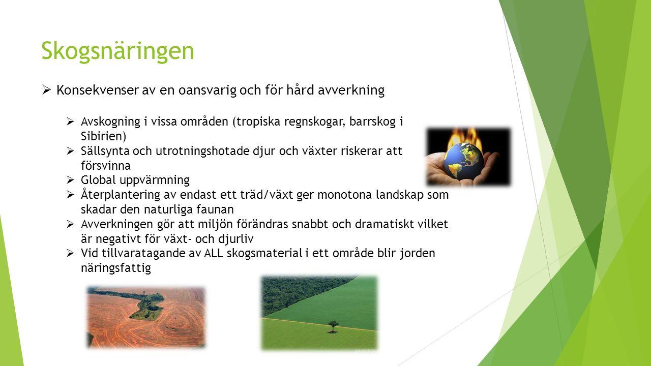 Skogsnäringen Konsekvenser av en oansvarig och för hård avverkning
