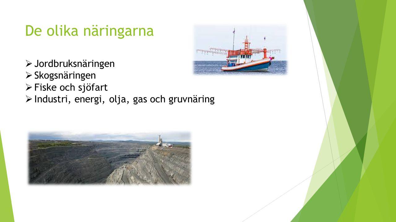De olika näringarna Jordbruksnäringen Skogsnäringen Fiske och sjöfart