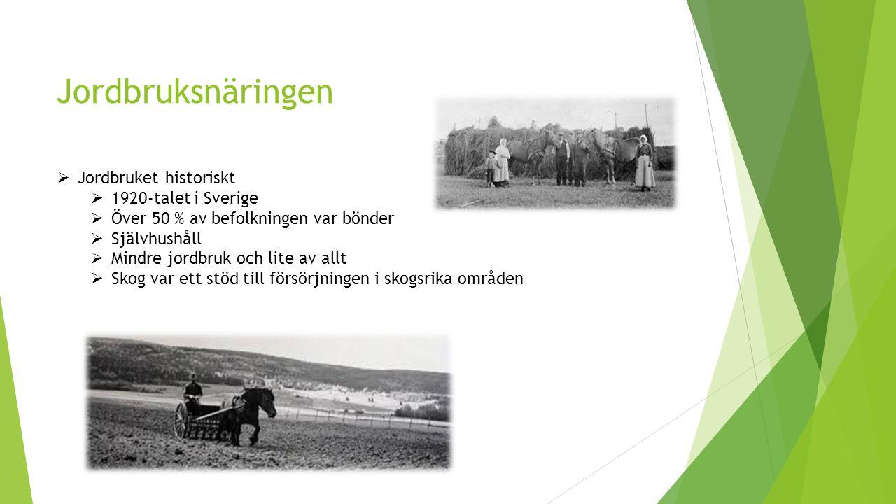 Jordbruksnäringen Jordbruket historiskt 1920-talet i Sverige