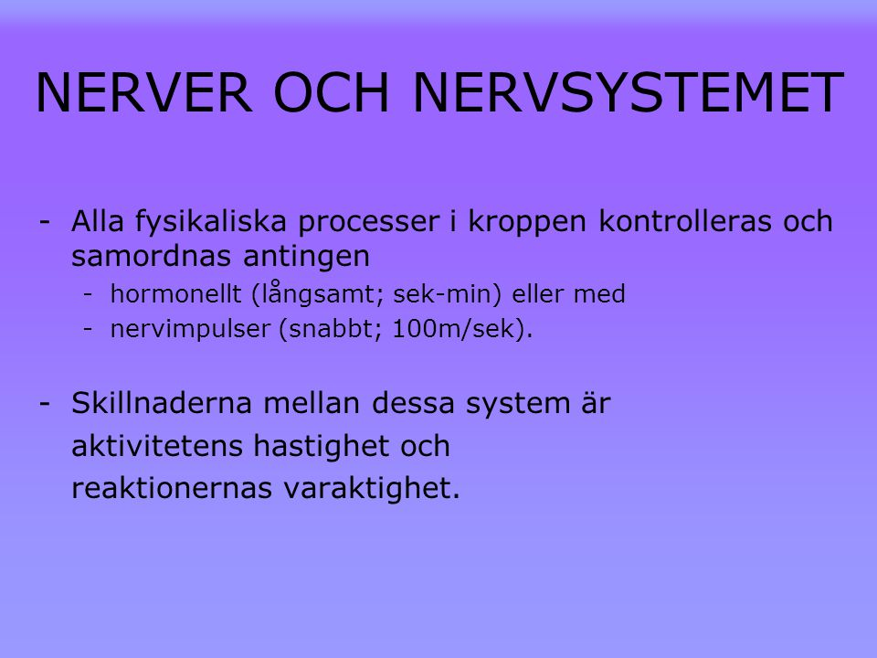 NERVER OCH NERVSYSTEMET