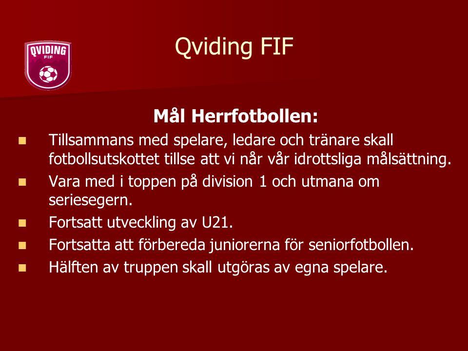 Qviding FIF Mål Herrfotbollen: