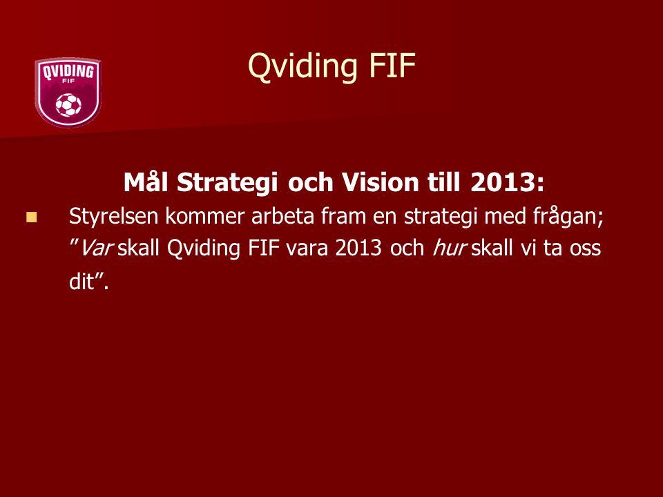 Mål Strategi och Vision till 2013:
