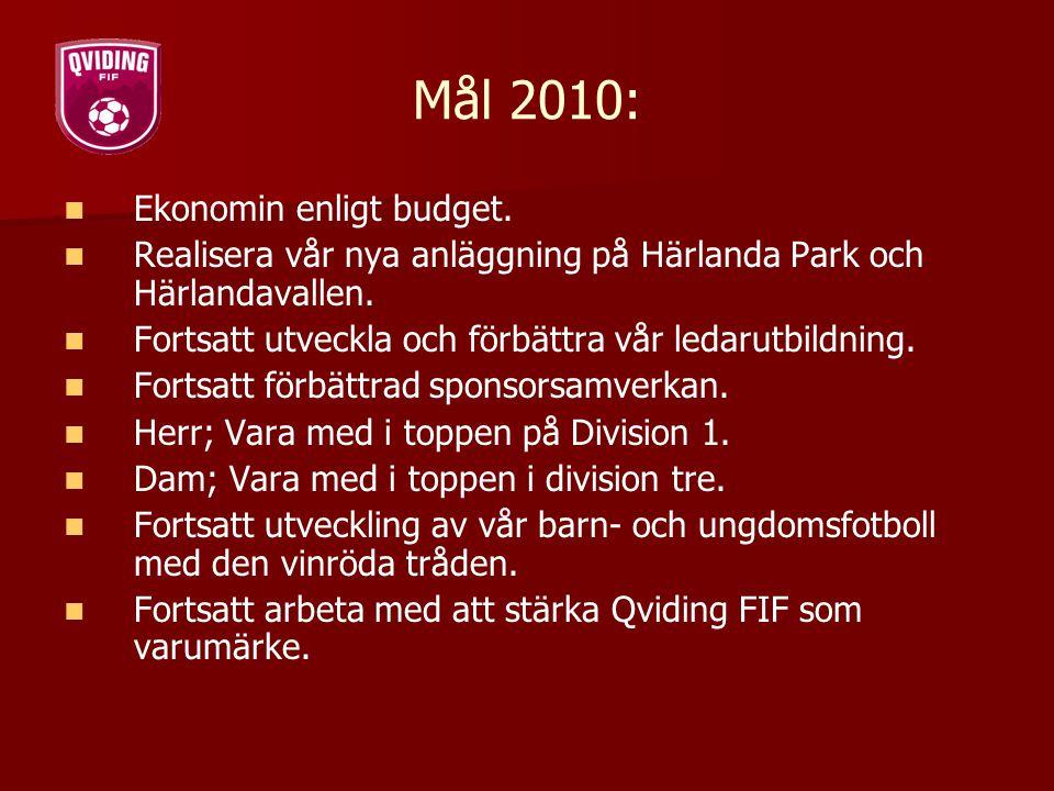Mål 2010: Ekonomin enligt budget.