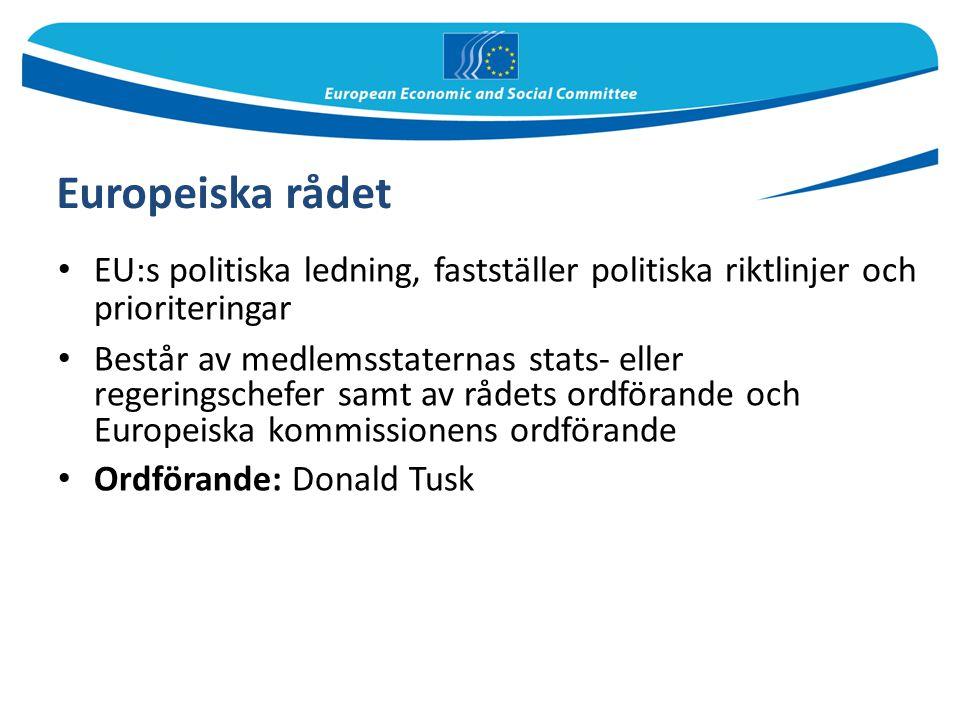 Europeiska rådet EU:s politiska ledning, fastställer politiska riktlinjer och prioriteringar.