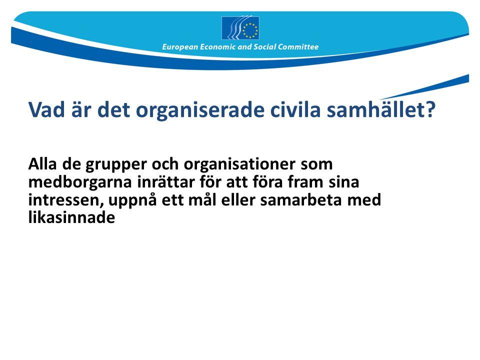 Vad är det organiserade civila samhället