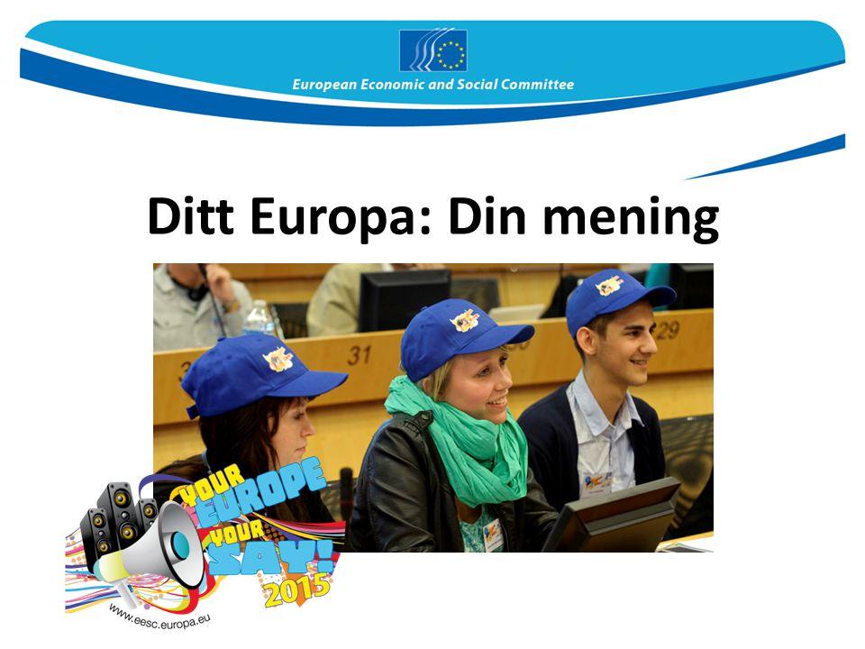 Ditt Europa: Din mening
