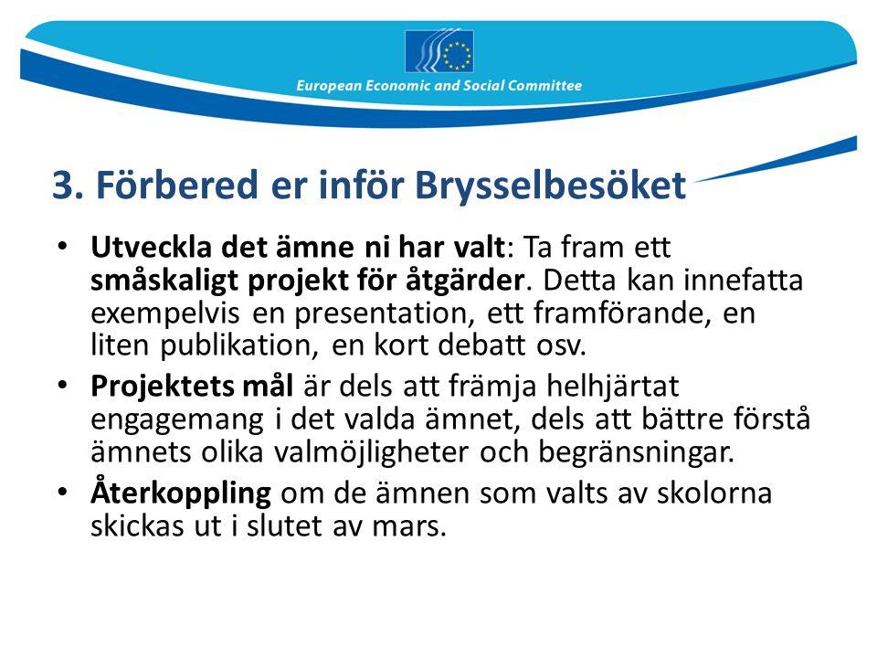 3. Förbered er inför Brysselbesöket