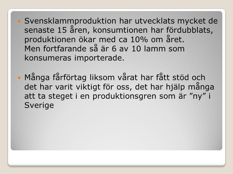 Svensklammproduktion har utvecklats mycket de senaste 15 åren, konsumtionen har fördubblats, produktionen ökar med ca 10% om året. Men fortfarande så är 6 av 10 lamm som konsumeras importerade.
