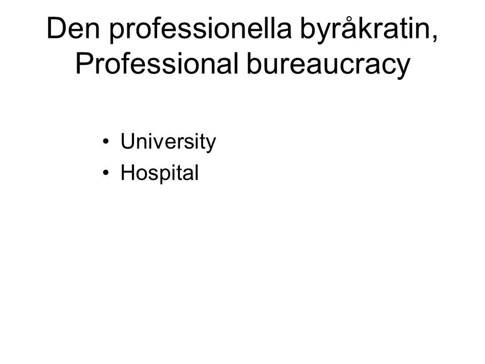 Den professionella byråkratin, Professional bureaucracy