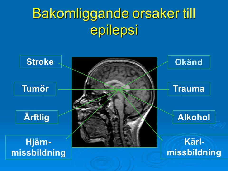 Bakomliggande orsaker till epilepsi