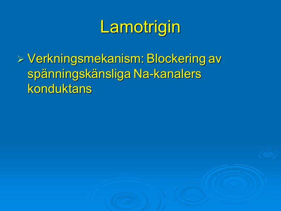 Lamotrigin Verkningsmekanism: Blockering av spänningskänsliga Na-kanalers konduktans