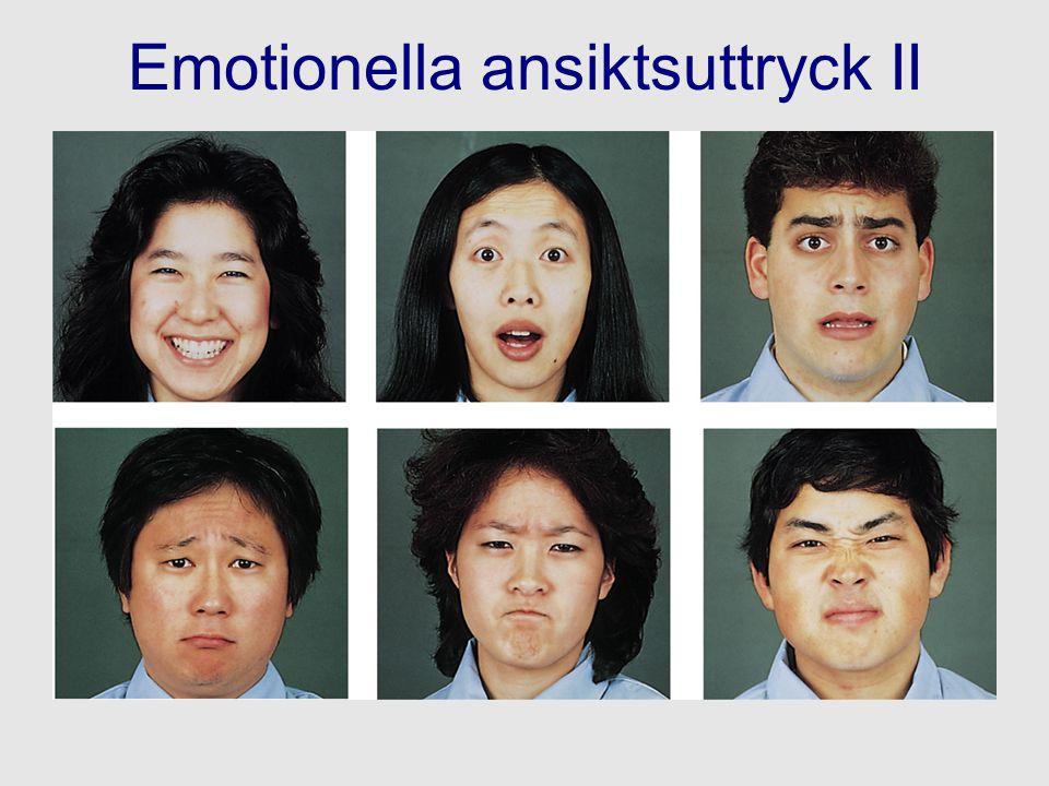 Emotionella ansiktsuttryck II
