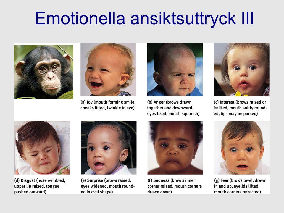 Emotionella ansiktsuttryck III