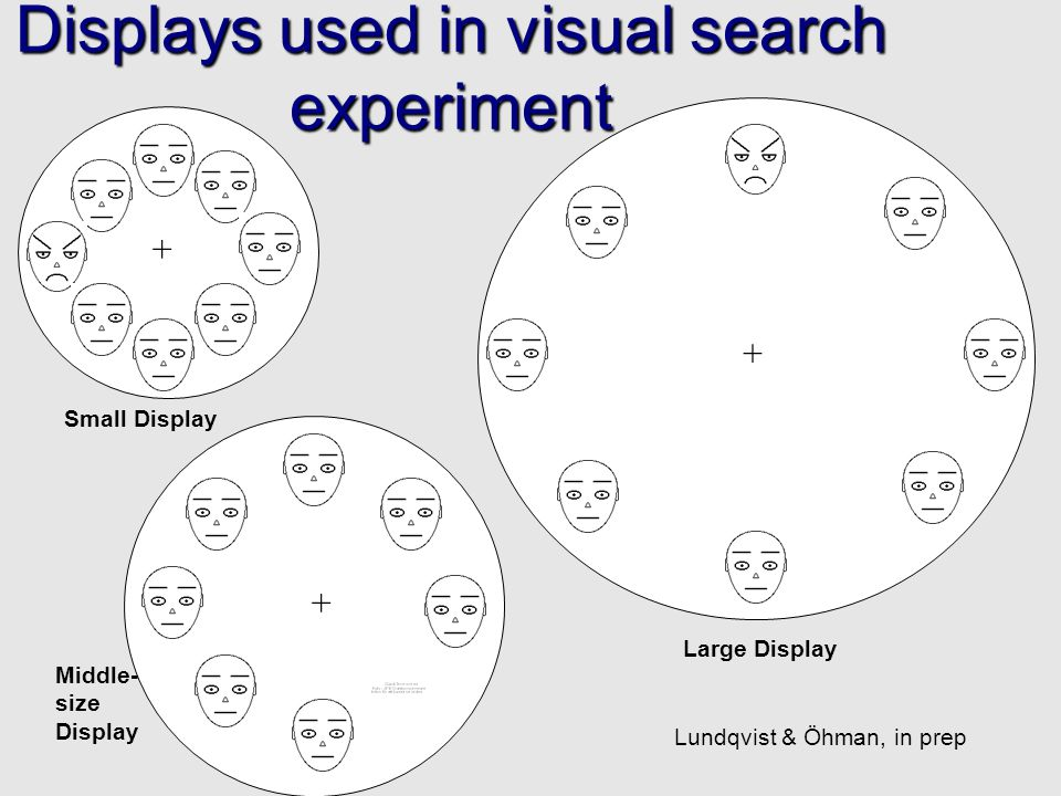 Displays used in visual search experiment