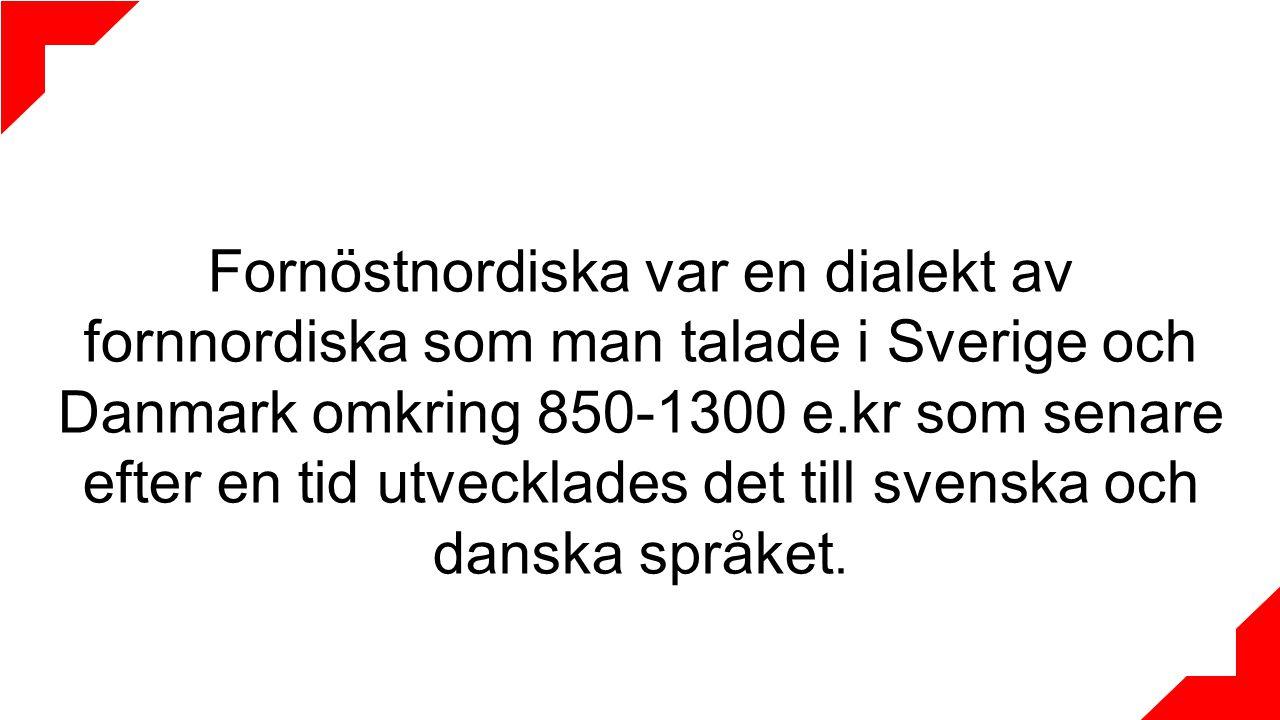 Fornöstnordiska var en dialekt av fornnordiska som man talade i Sverige och Danmark omkring 850-1300 e.kr som senare efter en tid utvecklades det till svenska och danska språket.