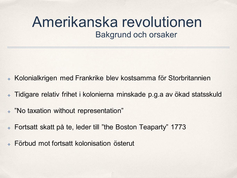 Amerikanska revolutionen Bakgrund och orsaker