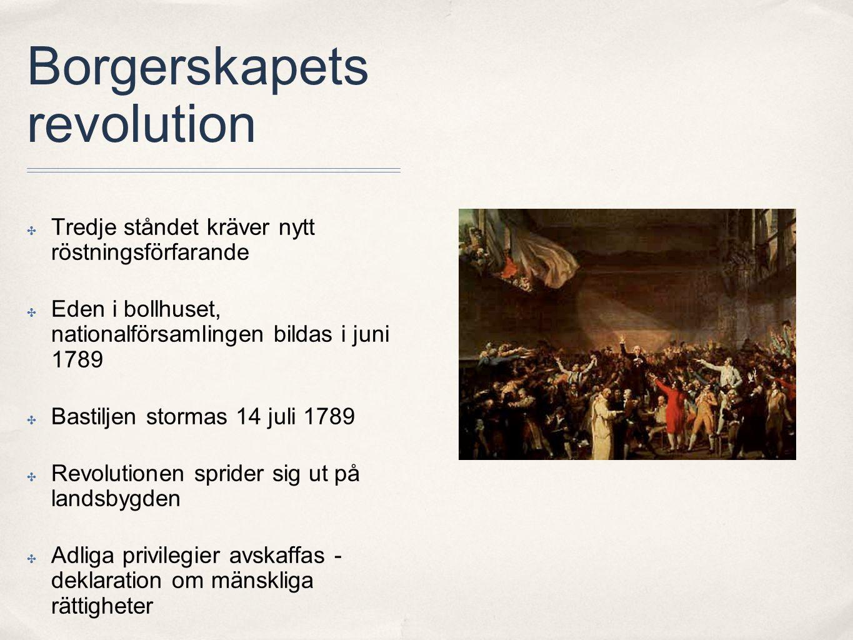 Borgerskapets revolution