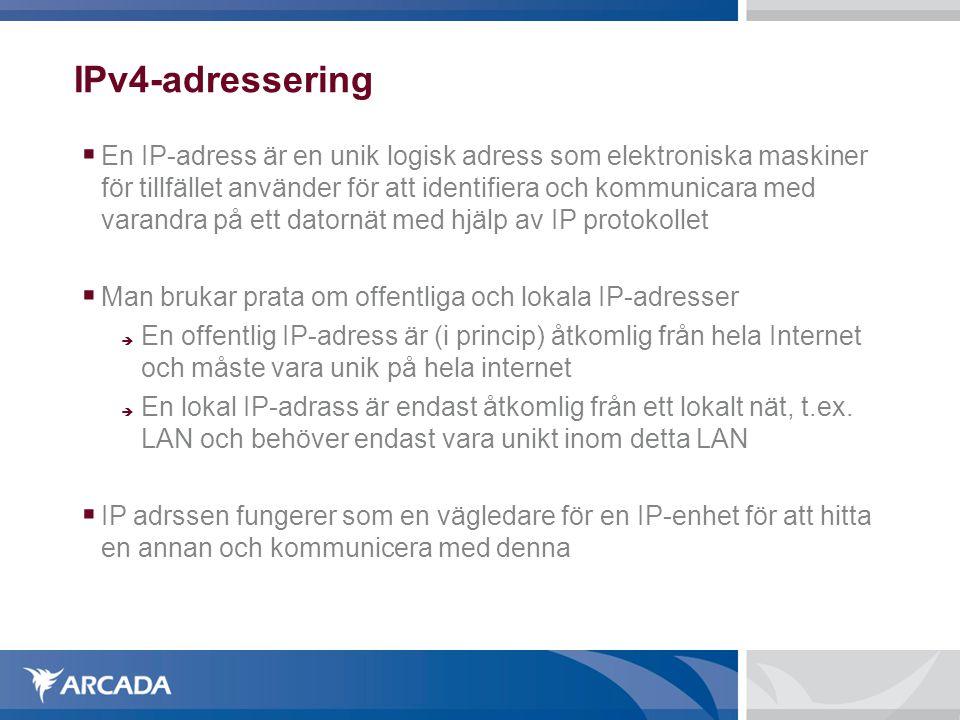 IPv4-adressering