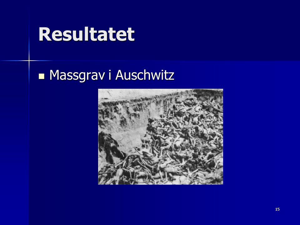 Resultatet Massgrav i Auschwitz