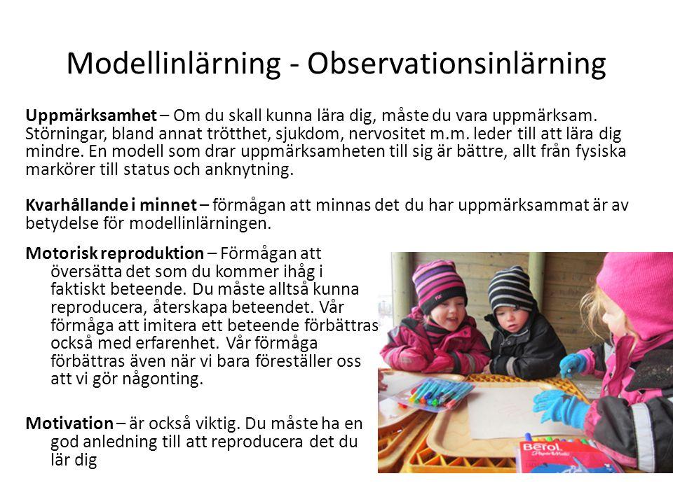 Modellinlärning - Observationsinlärning
