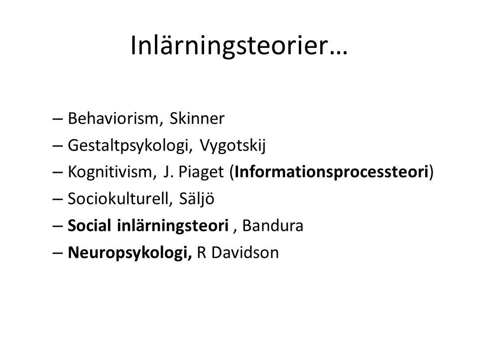 Inlärningsteorier… Behaviorism, Skinner Gestaltpsykologi, Vygotskij