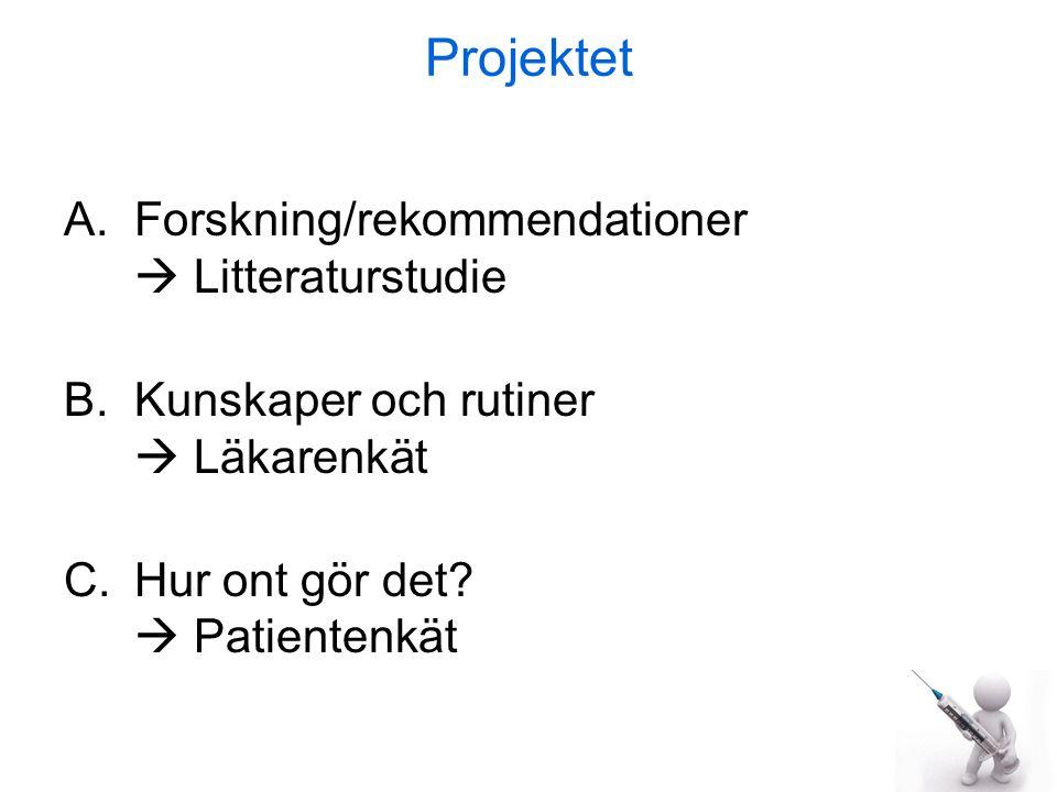 Projektet Forskning/rekommendationer  Litteraturstudie