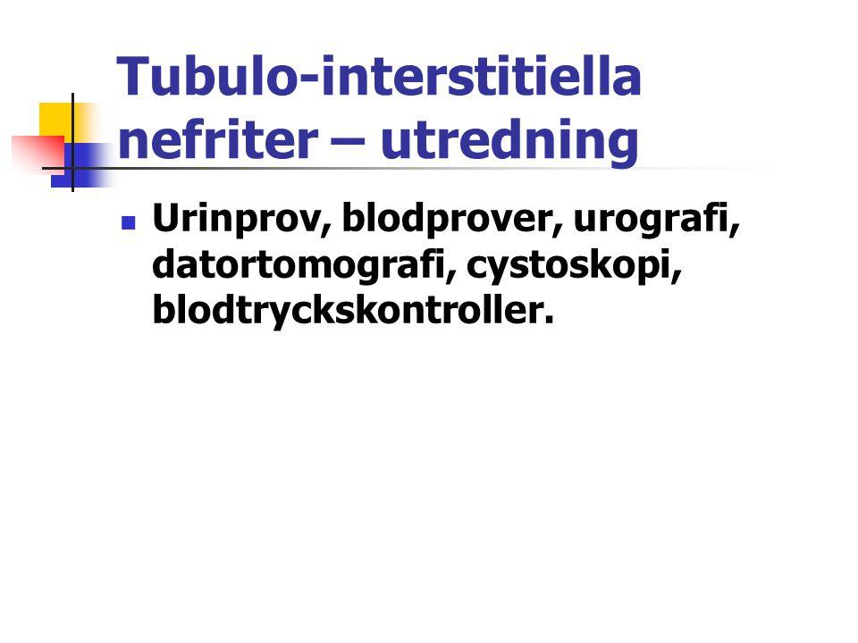 Tubulo-interstitiella nefriter – utredning