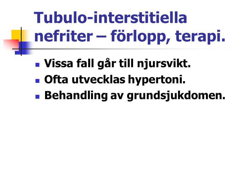 Tubulo-interstitiella nefriter – förlopp, terapi.