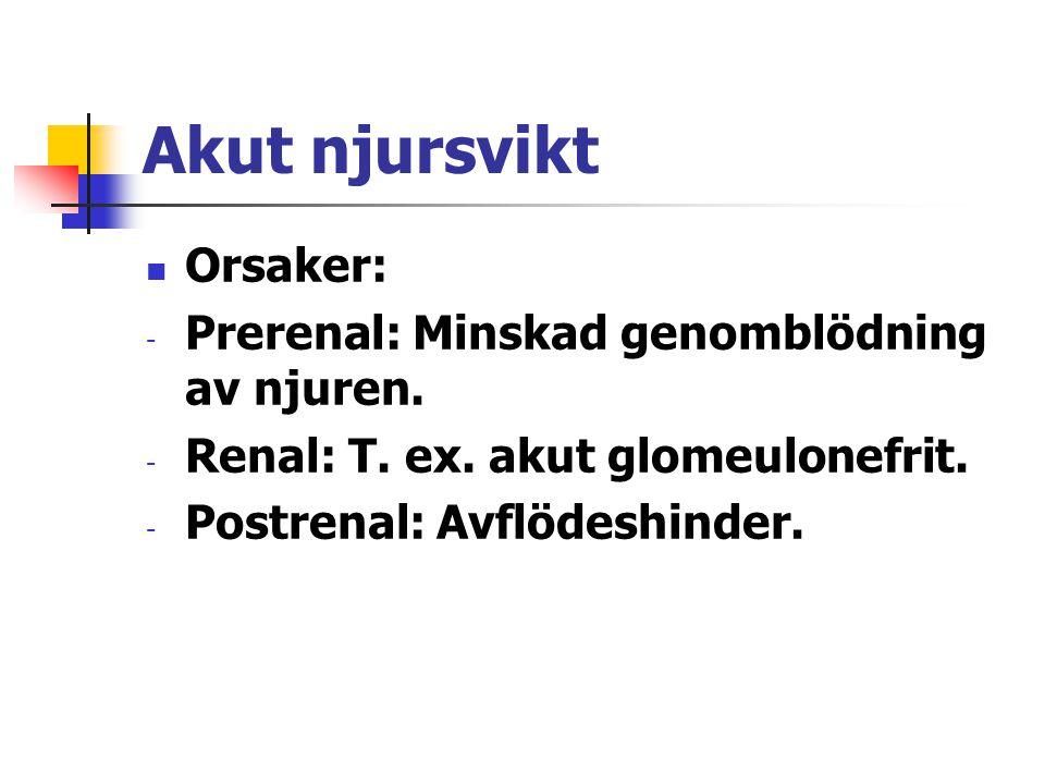 Akut njursvikt Orsaker: Prerenal: Minskad genomblödning av njuren.