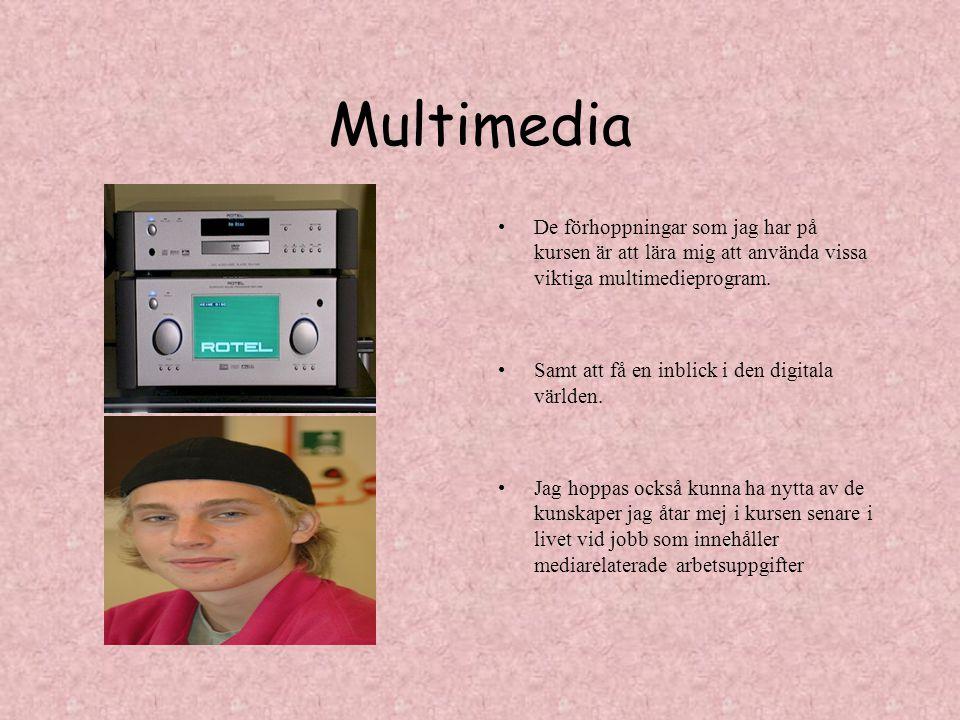 Multimedia De förhoppningar som jag har på kursen är att lära mig att använda vissa viktiga multimedieprogram.