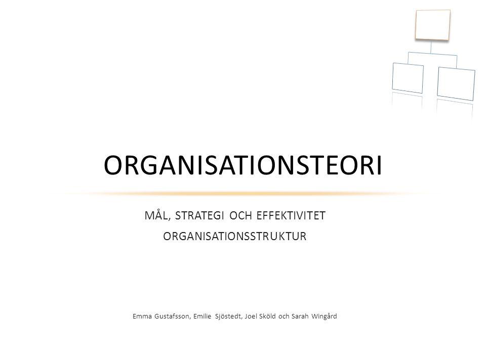 Organisationsteori MÅL, STRATEGI OCH EFFEKTIVITET