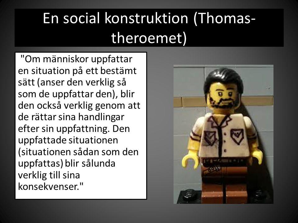 En social konstruktion (Thomas-theroemet)