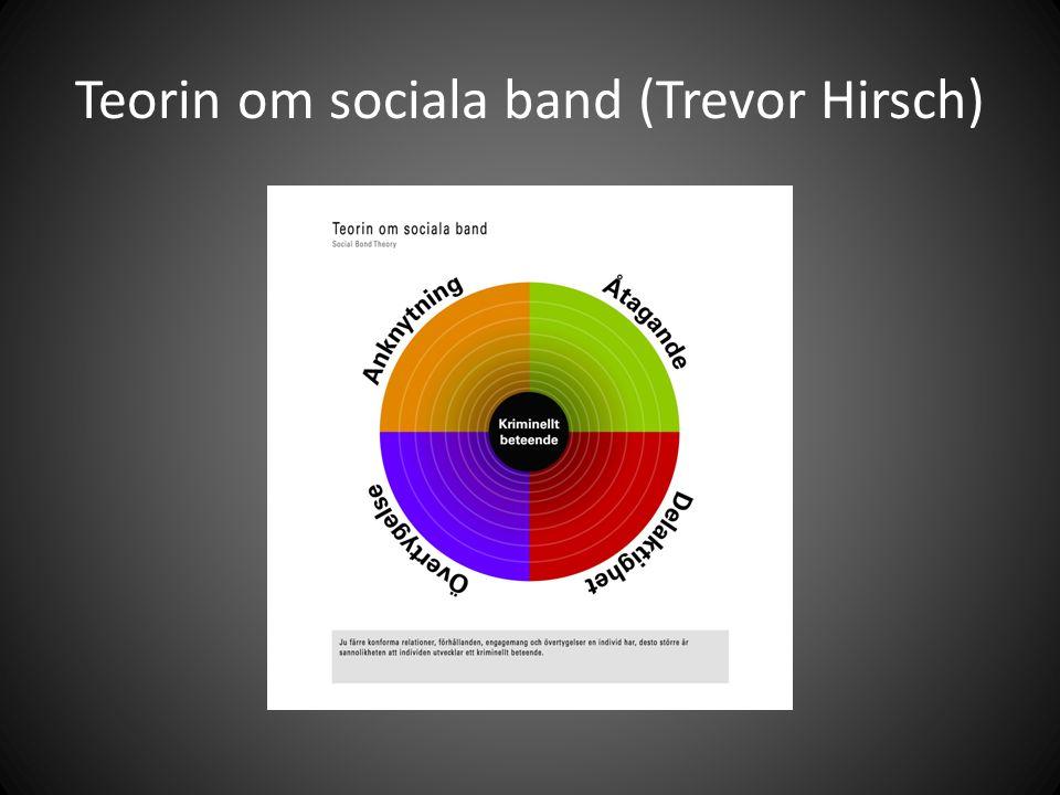 Teorin om sociala band (Trevor Hirsch)
